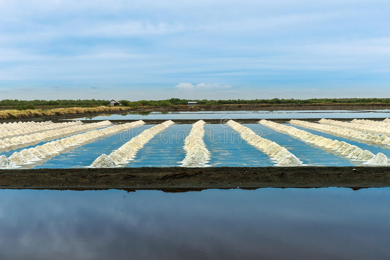 Het zoute landbouwbedrijf royalty-vrije stock foto's