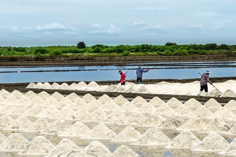 Het zoute landbouwbedrijf stock foto