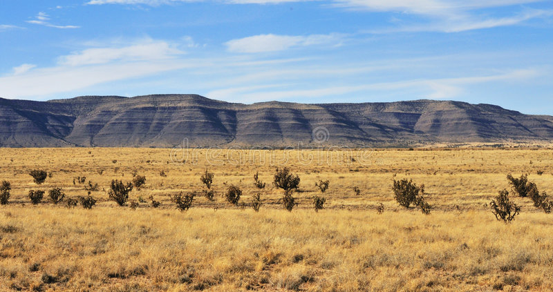 Het zuidelijke landschap van New Mexico stock fotografie