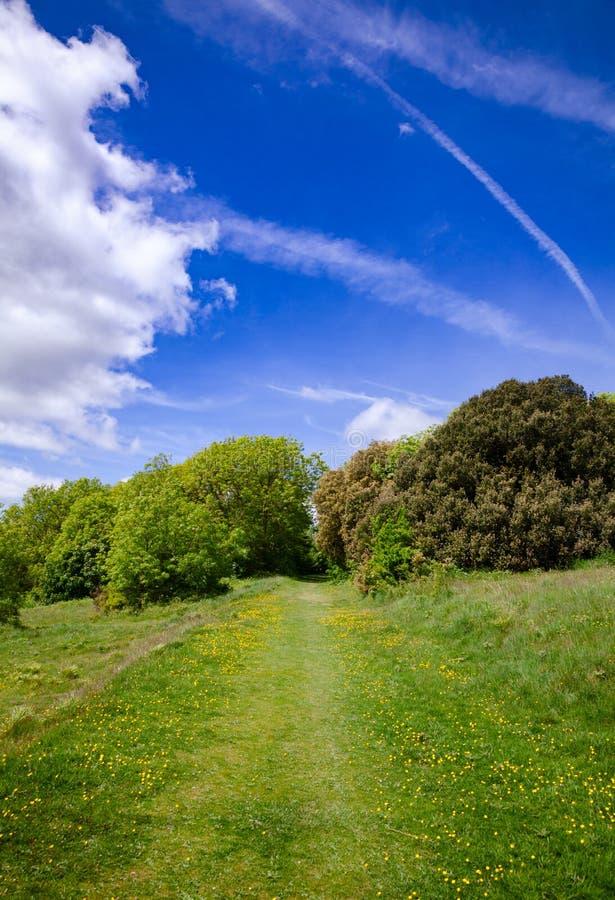 Het zuiden verslaat Manier Nationale Sleep dichtbij het Zuidoosten van Sussex van Eastbourne stock foto's