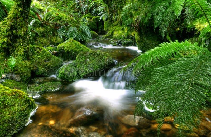 Het Zuideneiland Nieuw Zeeland van Punakaiki van pannekoekrotsen royalty-vrije stock afbeelding
