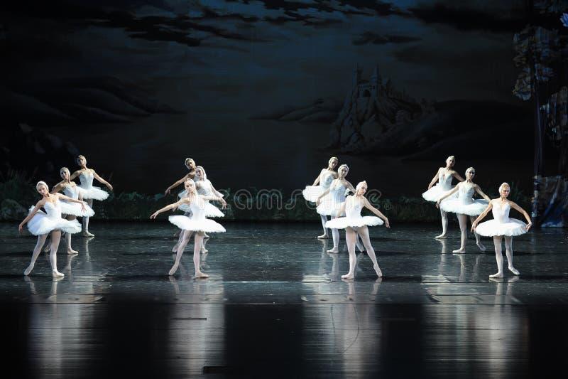 Het zwaan stam-Ballet Zwaanmeer stock afbeeldingen