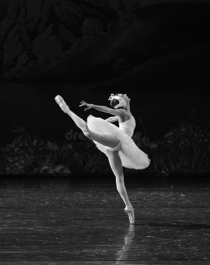 Het zwaan vlieg-ballet Zwaanmeer royalty-vrije stock afbeeldingen