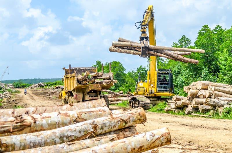 Het zware hout van de machineslading aan de vrachtwagen in de logboekyard royalty-vrije stock fotografie