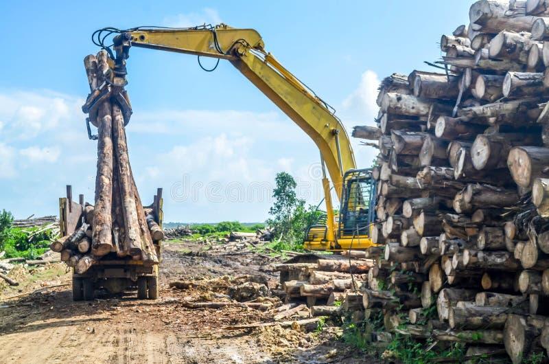 Het zware hout van de machineslading aan de vrachtwagen in de logboekyard stock fotografie