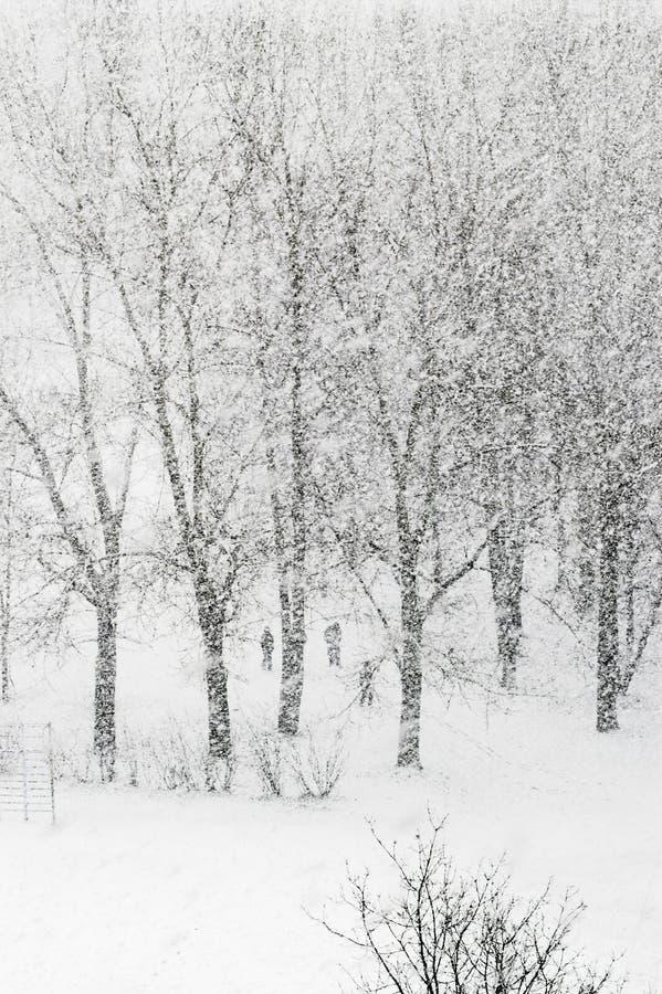 Het zware snowfalling royalty-vrije stock afbeeldingen