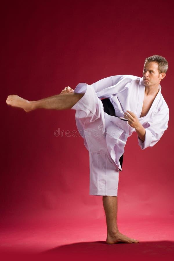 Het zwarte band van de karate het schoppen royalty-vrije stock afbeeldingen