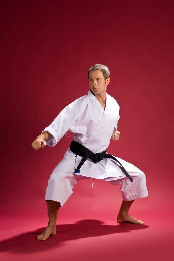 Het zwarte band van de karate in kimono royalty-vrije stock afbeelding