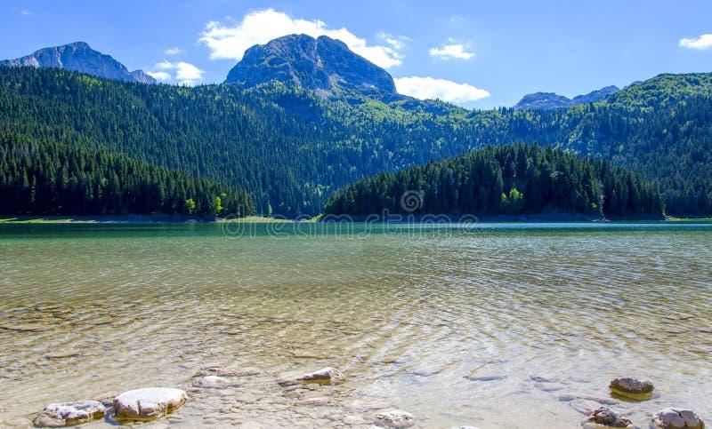 Het zwarte meer van Durmitor-Park montenegro stock foto's