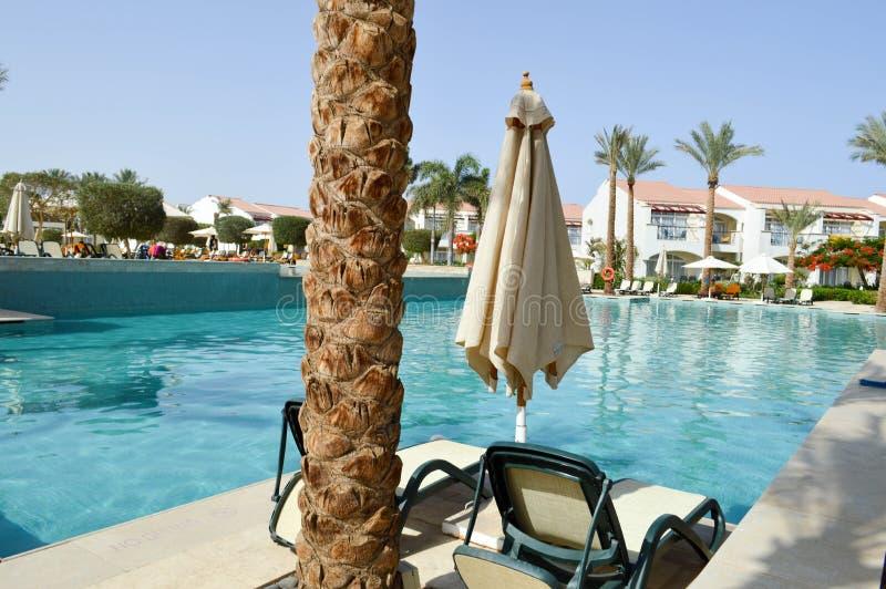Het zwembad met duidelijke blauwe waterchaise-longues met zonparaplu's en de palmen op een tropische warme overzees nemen, rust z royalty-vrije stock afbeeldingen