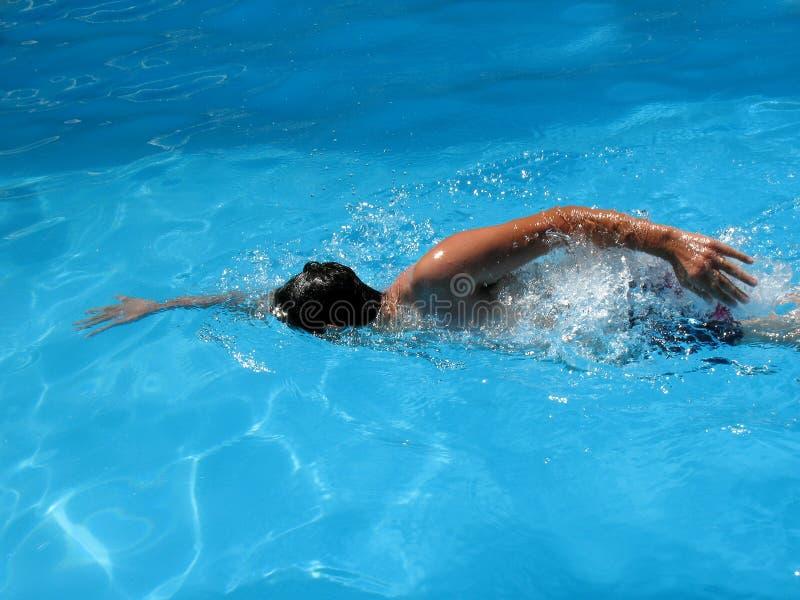 Het zwemmen stock afbeeldingen