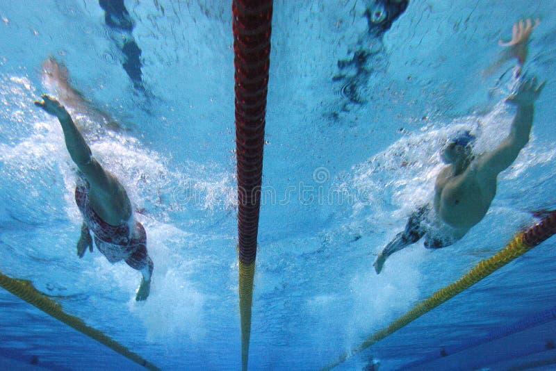 Het zwemmen actie 1 stock afbeelding