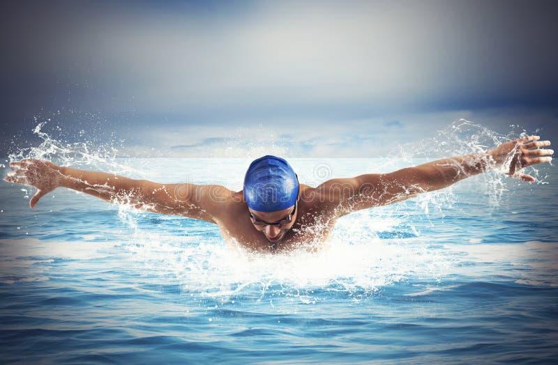 Het zwemmen in het Overzees royalty-vrije stock fotografie