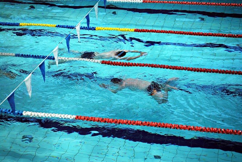 Het zwemmen in het zwembad stock foto's