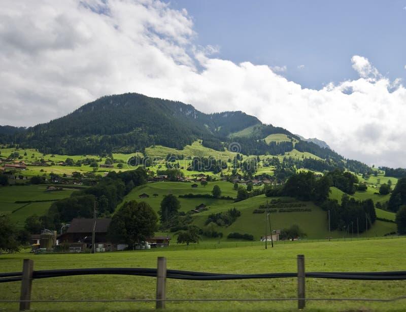 Het Zwitserse landschap van Alpen stock foto
