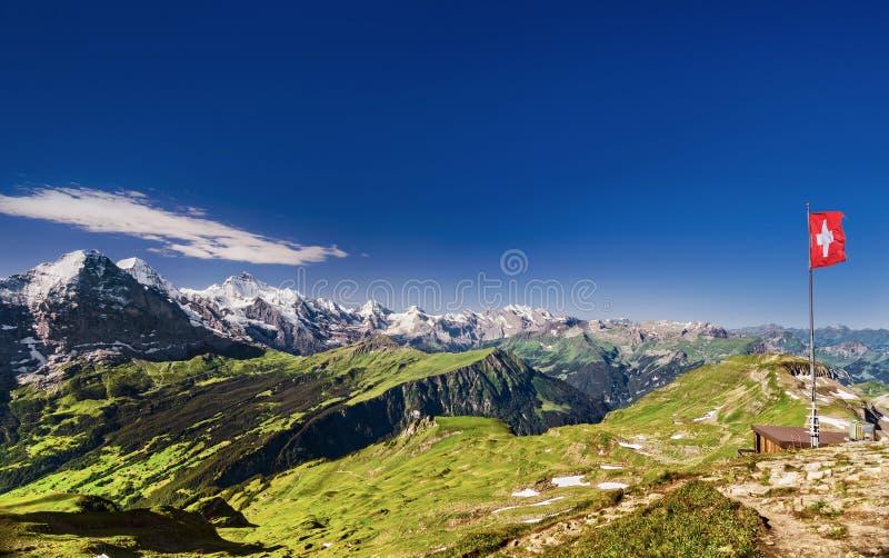 Het Zwitserse Panorama van de Berg stock afbeelding