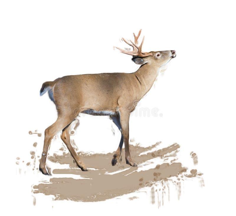 Hetde steel verwijderde van herten schilderen stock illustratie