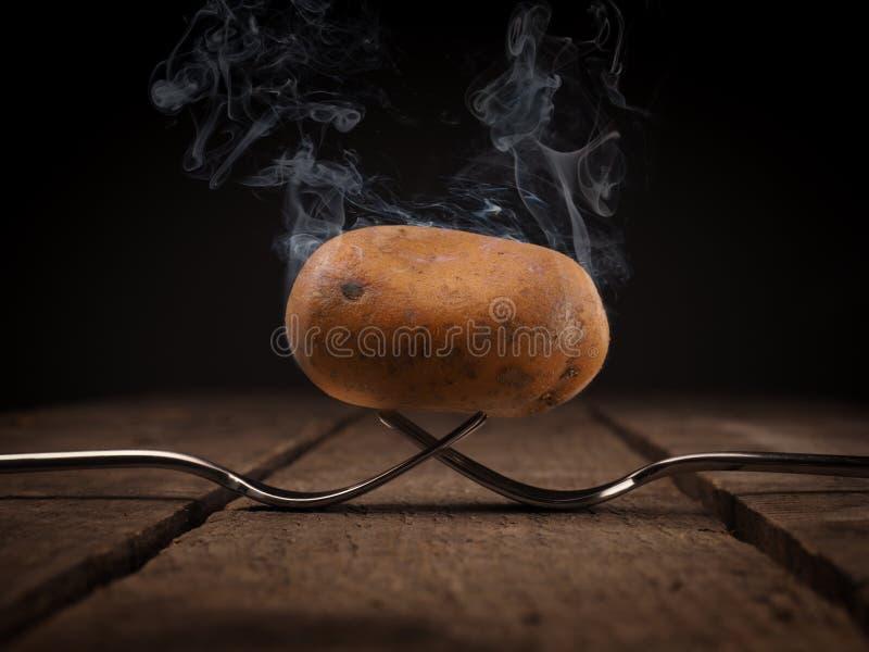 Hete aardappel op vorken stock foto