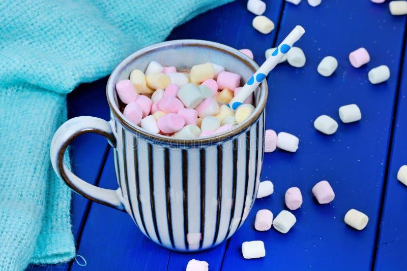 Hete chocolade met de minidrank van de heemstwinter stock foto