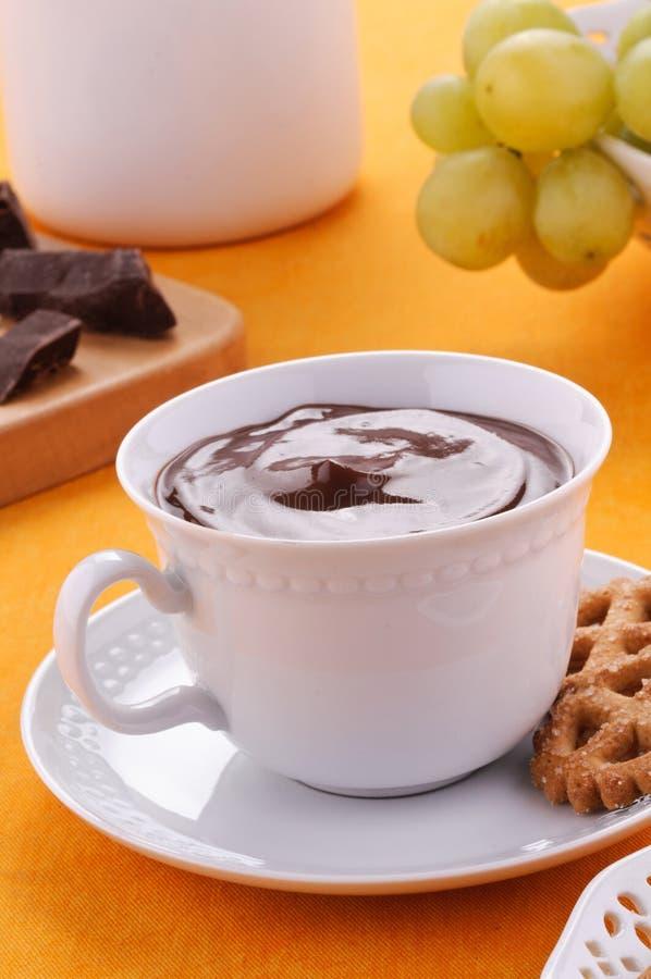 Hete chocolade met koekjes en vruchten royalty-vrije stock foto