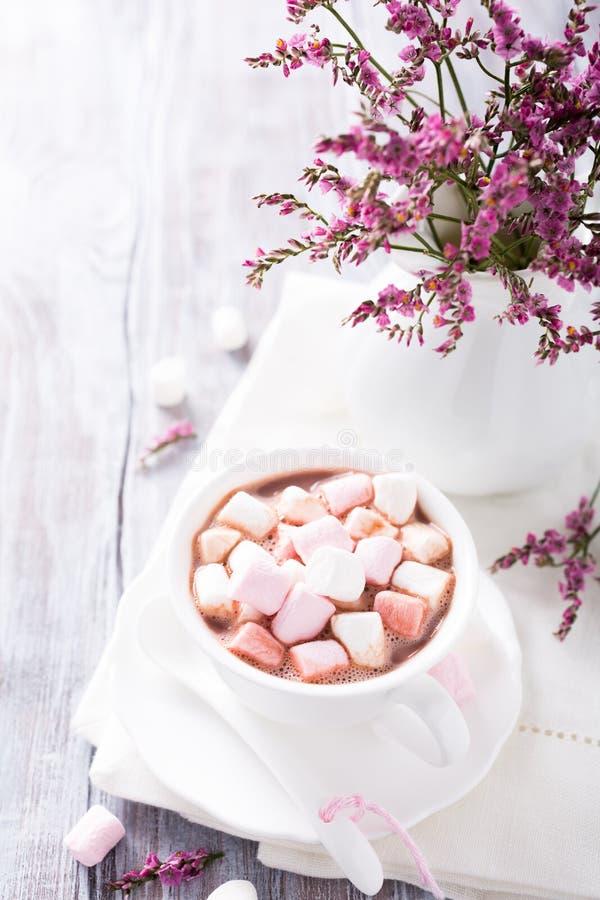 Hete chocolade met miniheemst stock foto
