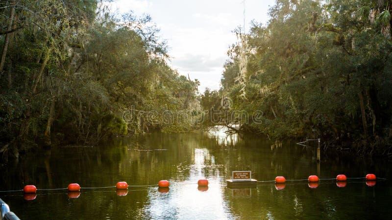 Hete dag in het Blauwe park van de de Lentesstaat Florida stock foto's