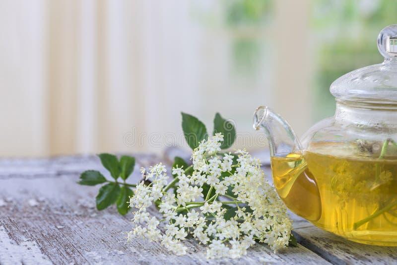 Hete Elderflower-thee, verse oudere bloem in de pot van de glasthee stock foto