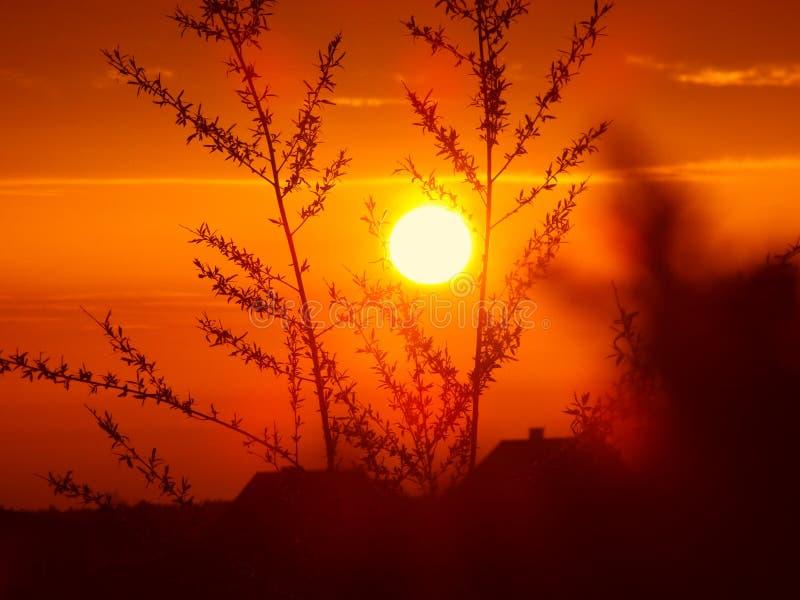 Hete en heldere zonsondergang stock fotografie