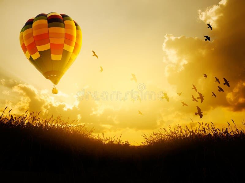 Hete luchtballon die met vogels in zonsonderganghemel vliegt, stock foto's