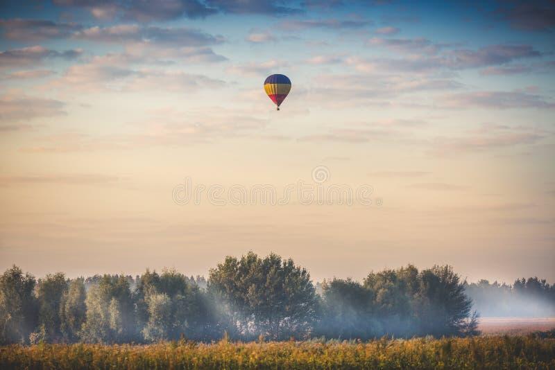 Hete luchtballon die over bos bij vroege ochtend vliegen stock afbeelding