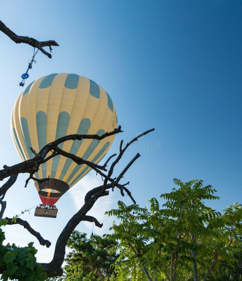 Hete luchtballon die over bos vliegen royalty-vrije stock fotografie