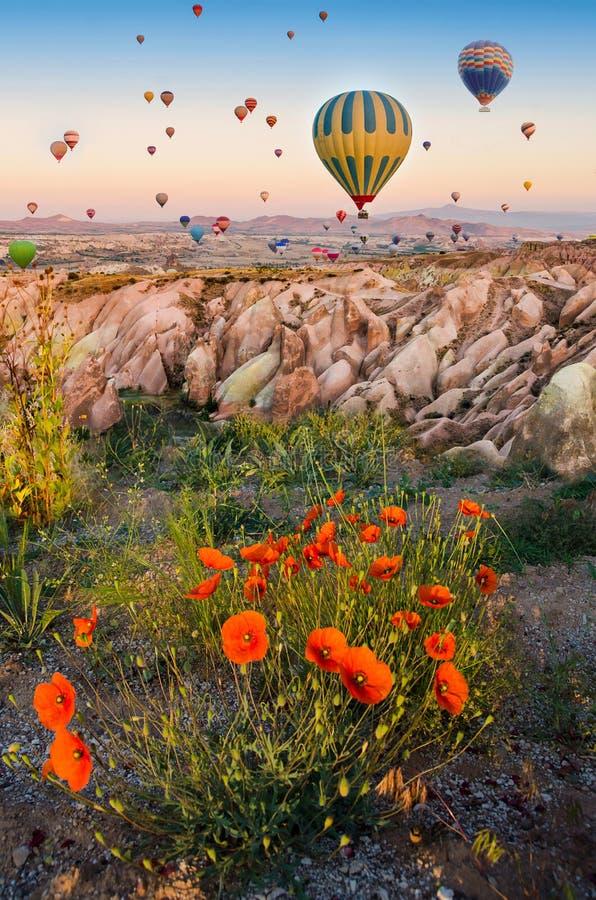Hete luchtballon die over rotslandschap vliegen met papavers in Cappadocia Turkije royalty-vrije stock foto