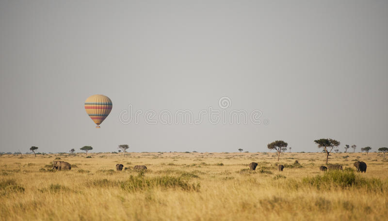 Hete luchtballon in Kenia royalty-vrije stock foto's