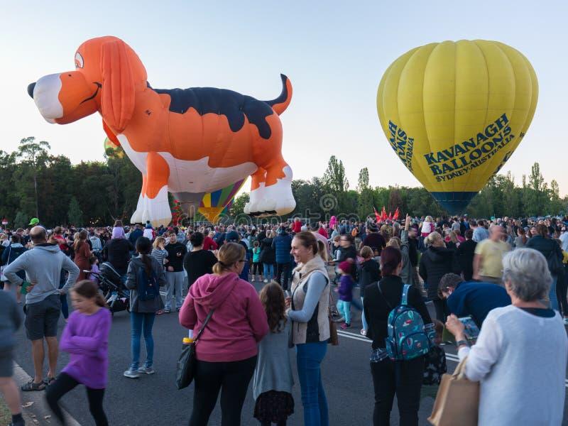 Hete Luchtballons Canberra stock afbeelding