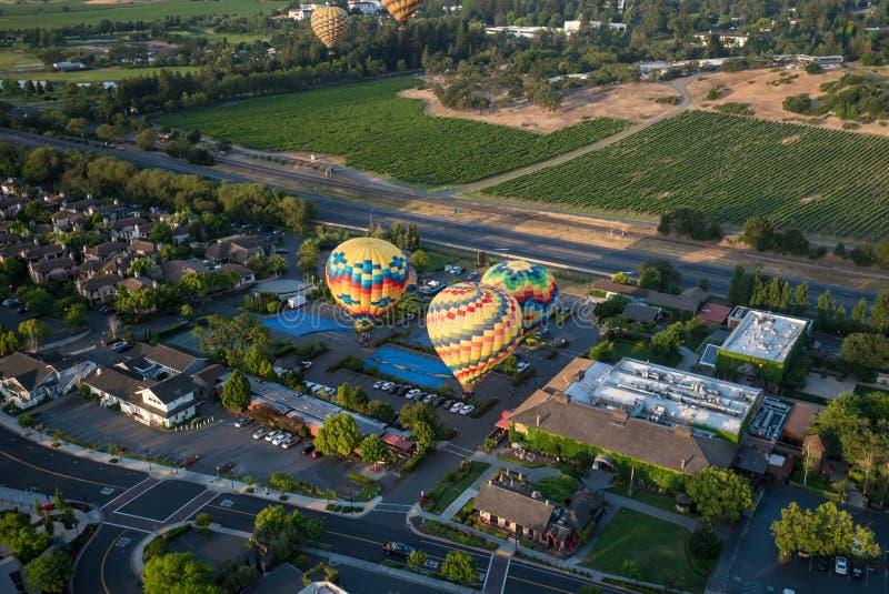 Hete Luchtballons die boven Wijngaarden drijven stock afbeeldingen