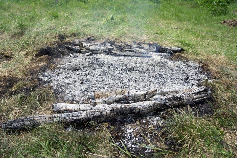 Hete steenkolen van het onlangs gebrande vuur op een groene open plek, close-up stock fotografie