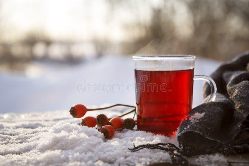 Hete thee van rozebottels en hibiscus met vruchten en een sjaal outd stock foto's