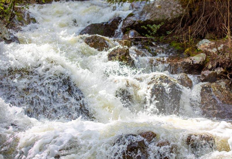 Hetzender Wasserfall mit üppigem Gras in Rocky Mountain National Park stockbilder