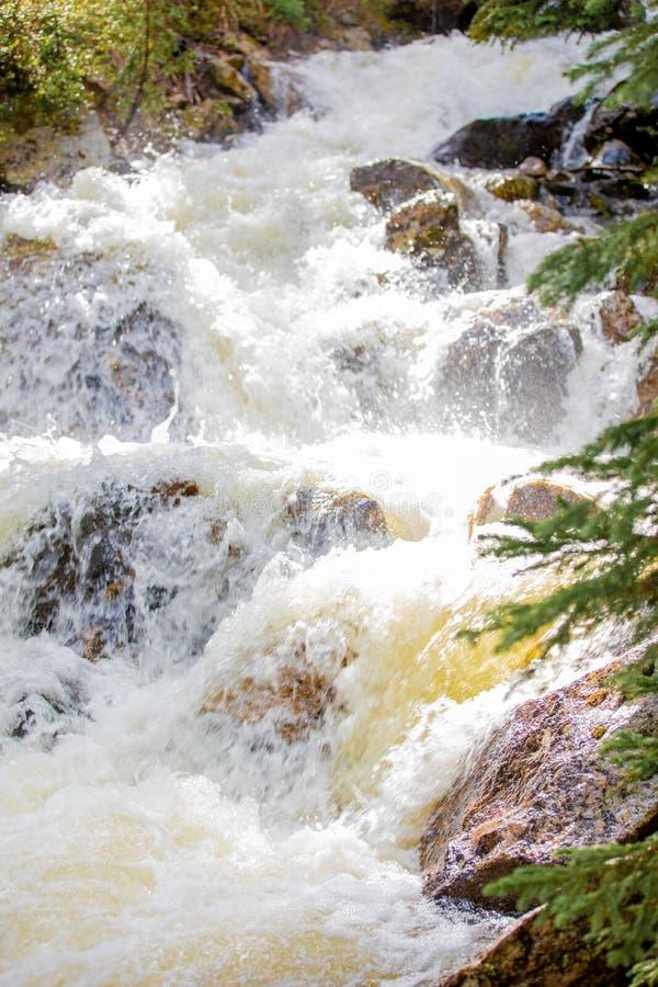 Hetzender Wasserfall mit üppigem Gras in Rocky Mountain National Park stockfoto