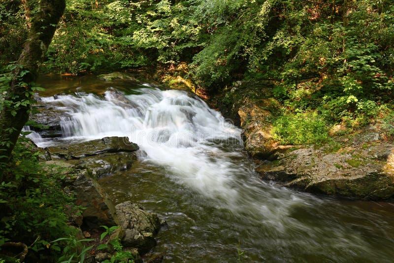 Hetzendes Wasser des kleinen Flusses lizenzfreie stockbilder