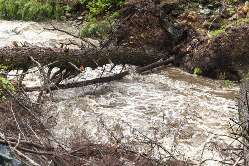Hetzendes Wasser von der schweren flutartigen Überschwemmung im Strom stockfotos