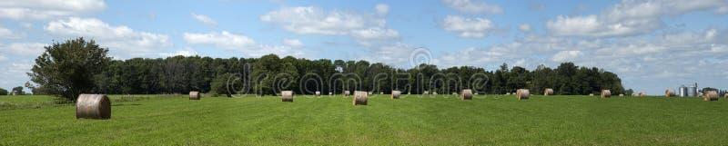 Heu-Feld emballiert Ackerland-Panorama, Fahne stockfoto