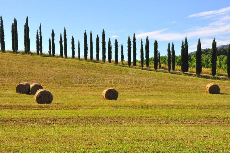 Heu rollt in Toskana, Italien lizenzfreie stockbilder