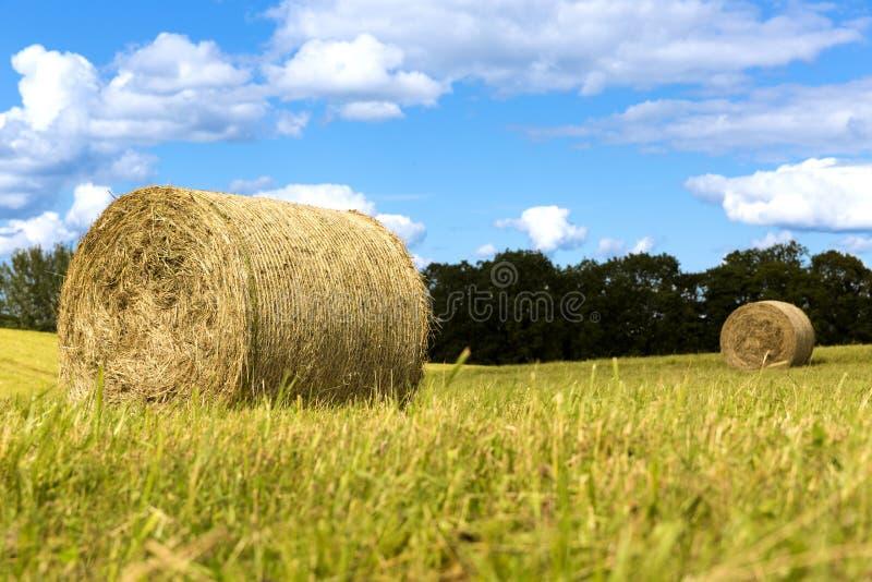Heuballen auf dem Feld nach Ernte, Landschaftslandschaft, schöner Himmel lizenzfreies stockbild