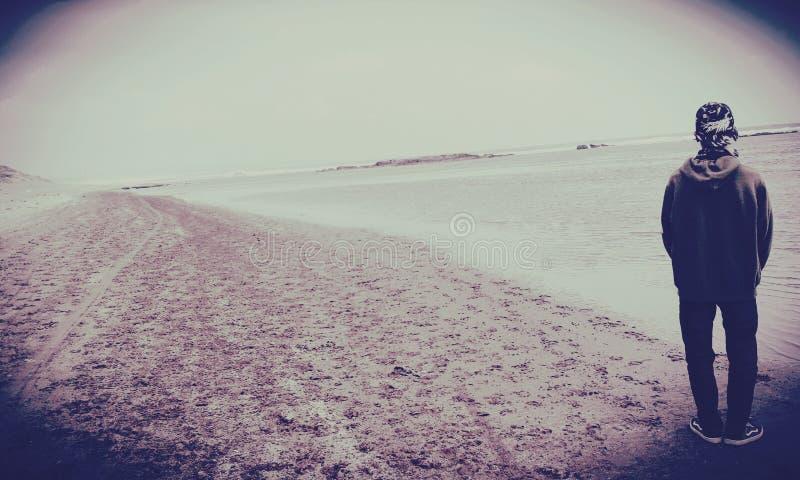 Heulang de sayang de Pantai photographie stock libre de droits