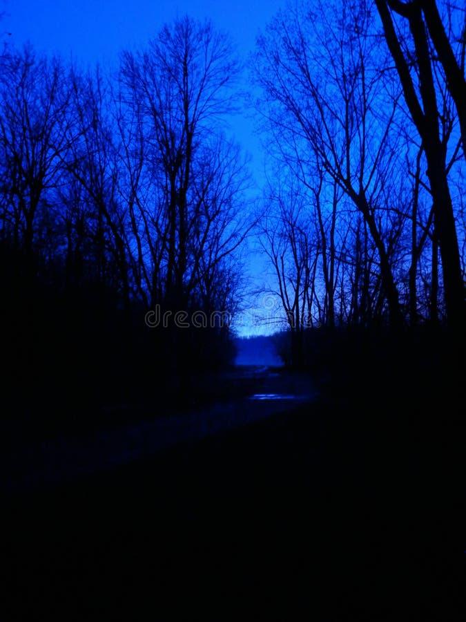 Heure bleue photographie stock libre de droits