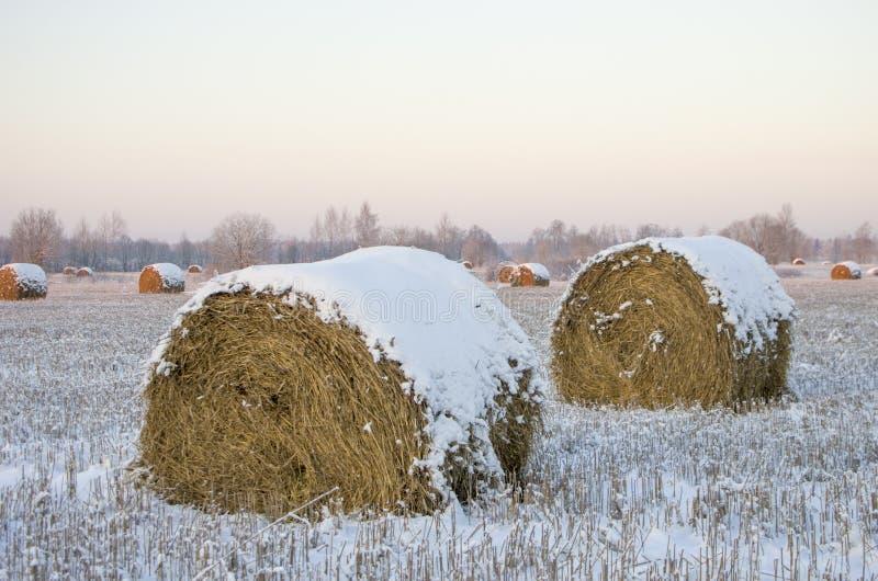 Heuschober auf dem gefrorenen Feld stockfotografie