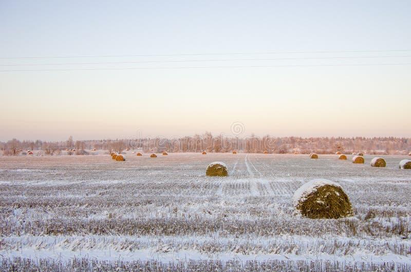 Heuschober auf dem gefrorenen Feld lizenzfreies stockbild