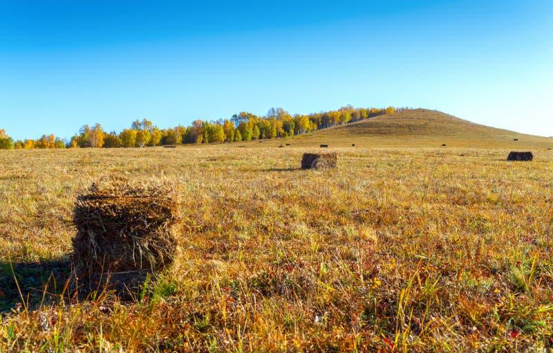 Heuschober auf den Wiesen von Innere Mongolei lizenzfreie stockbilder