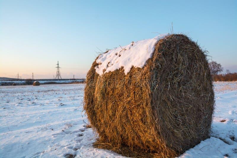Heuschober auf der Forderung durchgesetzt durch Schnee Ländliche Naturwinterlandschaft am Morgen stockfoto